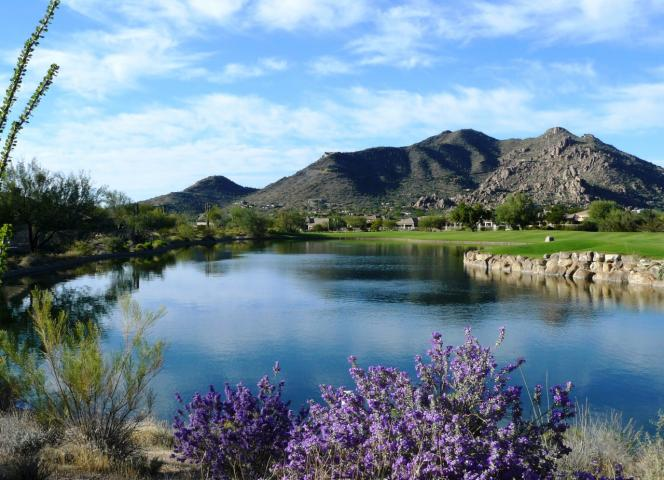 Sonoran properties: Terravita black mountain views